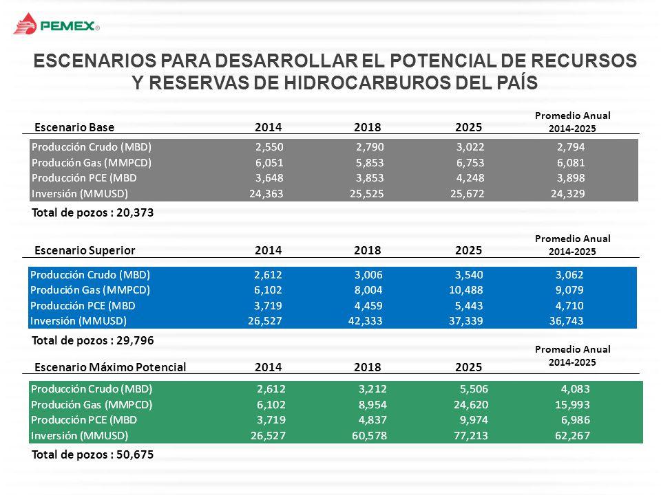 ESCENARIOS PARA DESARROLLAR EL POTENCIAL DE RECURSOS Y RESERVAS DE HIDROCARBUROS DEL PAÍS
