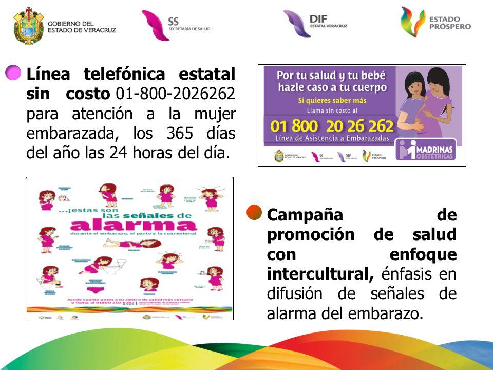 Línea telefónica estatal sin costo 01-800-2026262 para atención a la mujer embarazada, los 365 días del año las 24 horas del día.