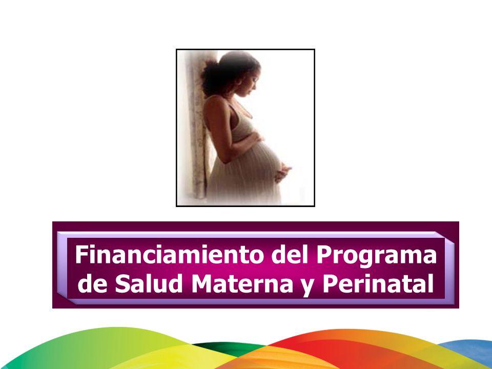 Financiamiento del Programa de Salud Materna y Perinatal
