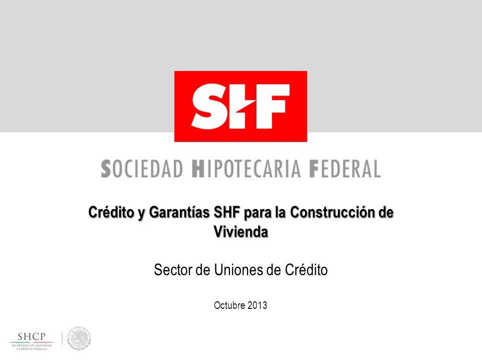 Crédito y Garantías SHF para la Construcción de Vivienda Sector de Uniones de Crédito Octubre 2013