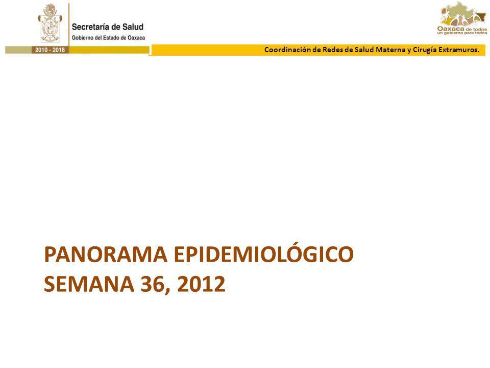 Panorama epidemiológico SEMANA 36, 2012