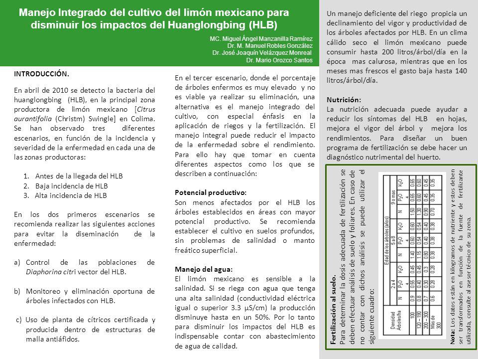 Manejo Integrado del cultivo del limón mexicano para disminuir los impactos del Huanglongbing (HLB)