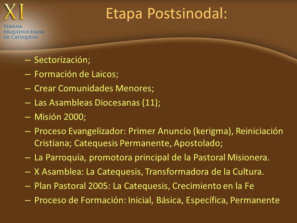 Etapa Postsinodal: Sectorización; Formación de Laicos;