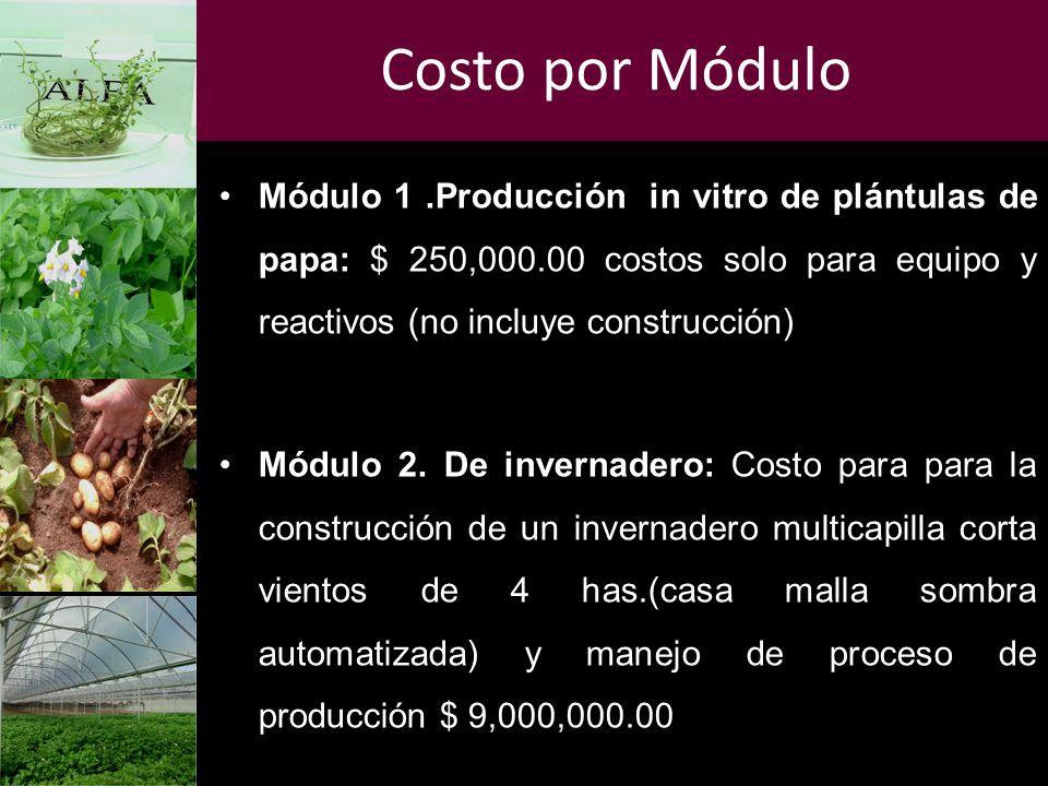 Costo por Módulo Módulo 1 .Producción in vitro de plántulas de papa: $ 250,000.00 costos solo para equipo y reactivos (no incluye construcción)