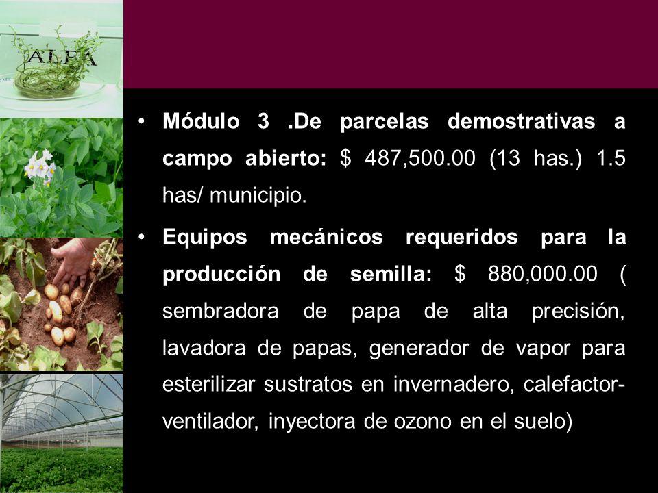 Módulo 3. De parcelas demostrativas a campo abierto: $ 487,500