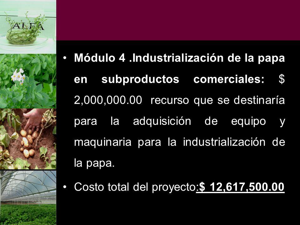 Módulo 4 .Industrialización de la papa en subproductos comerciales: $ 2,000,000.00 recurso que se destinaría para la adquisición de equipo y maquinaria para la industrialización de la papa.