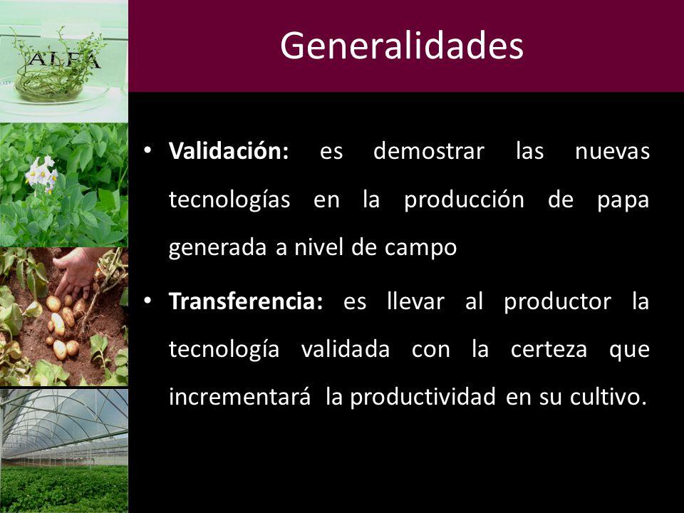 Generalidades Validación: es demostrar las nuevas tecnologías en la producción de papa generada a nivel de campo.