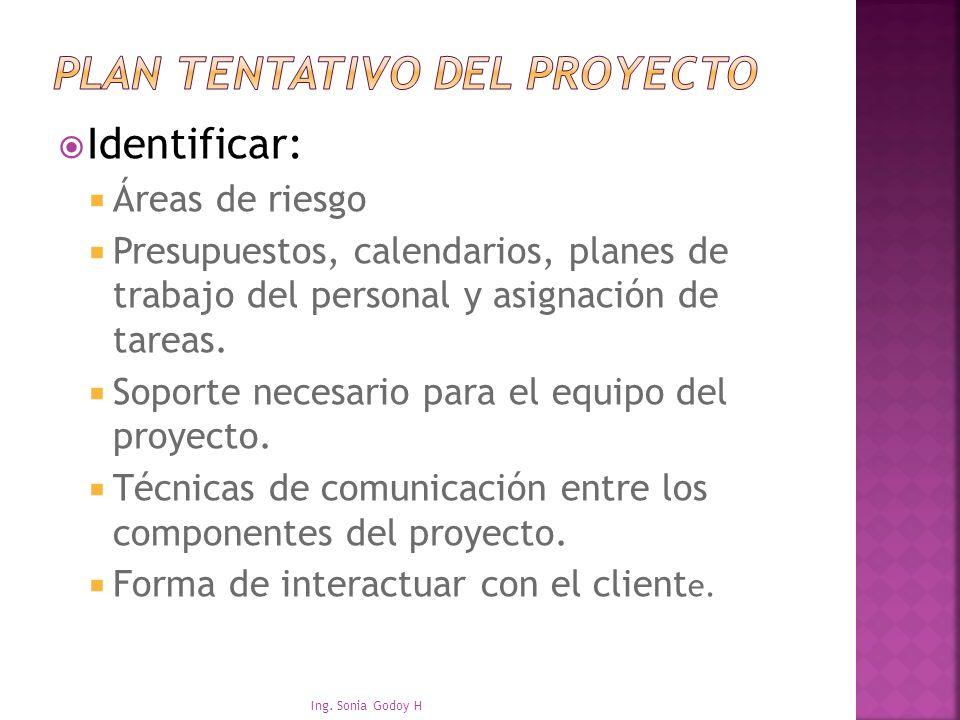Plan tentativo del proyecto