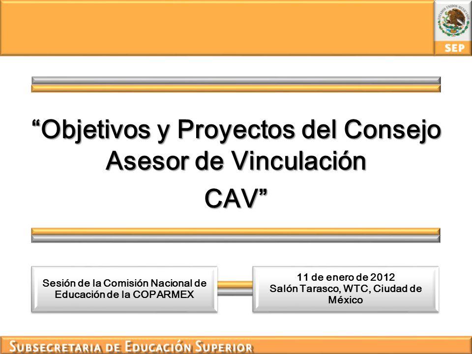 Objetivos y Proyectos del Consejo Asesor de Vinculación