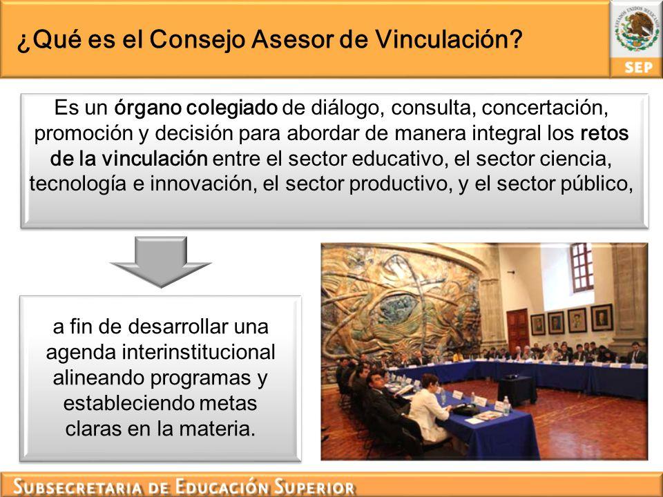 ¿Qué es el Consejo Asesor de Vinculación