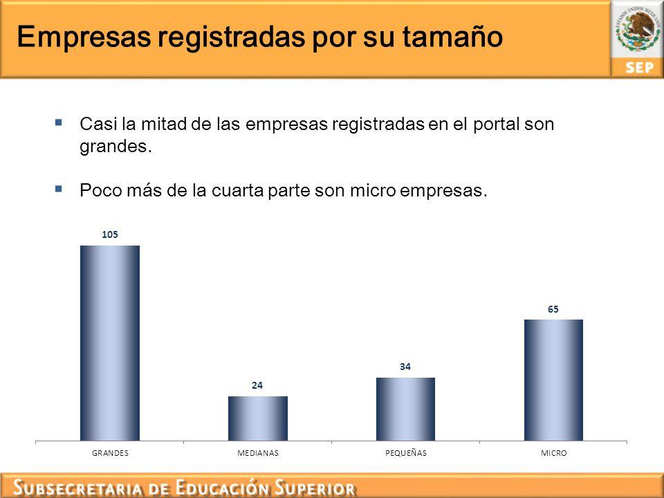 Empresas registradas por su tamaño
