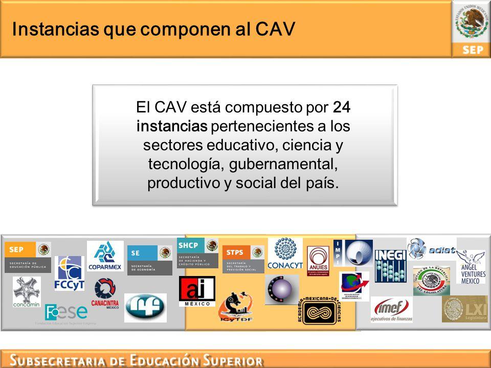 Instancias que componen al CAV