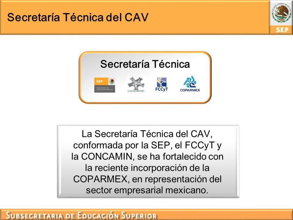 Secretaría Técnica del CAV