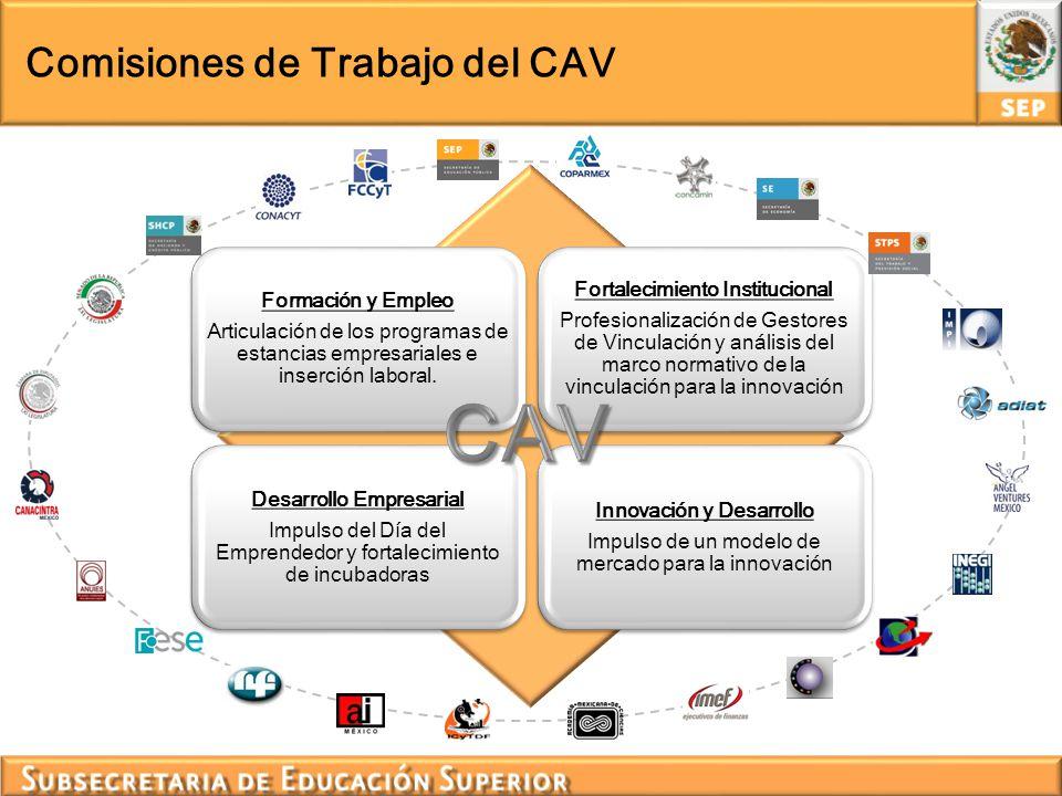 CAV Comisiones de Trabajo del CAV Fortalecimiento Institucional