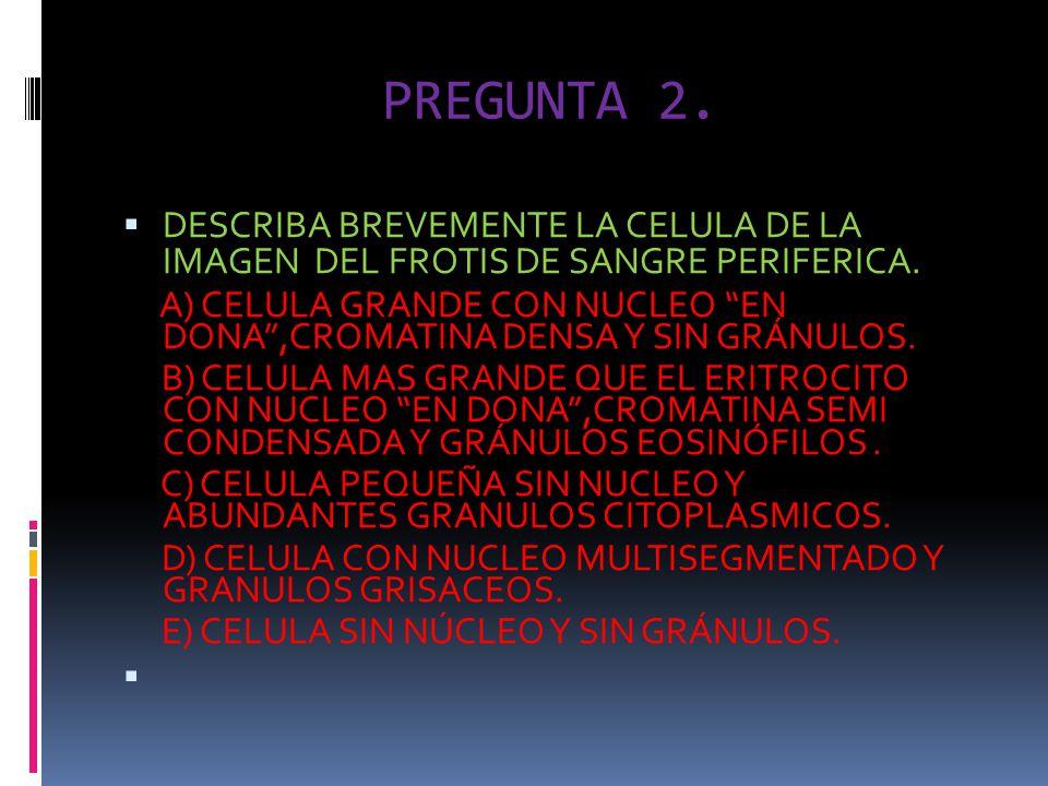 PREGUNTA 2. DESCRIBA BREVEMENTE LA CELULA DE LA IMAGEN DEL FROTIS DE SANGRE PERIFERICA.