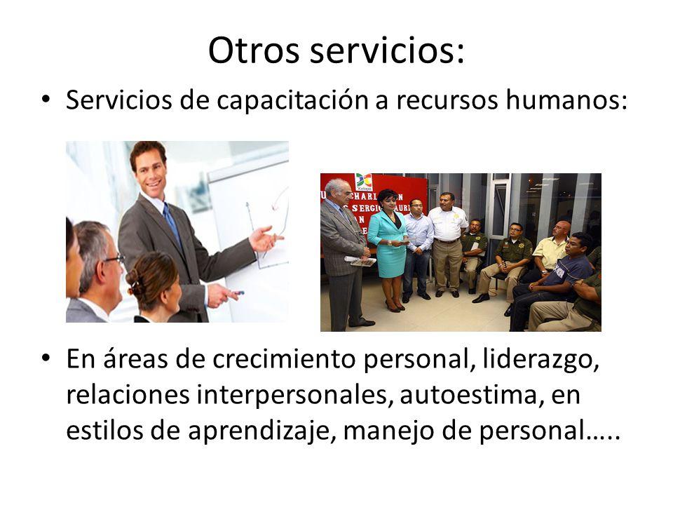 Otros servicios: Servicios de capacitación a recursos humanos: