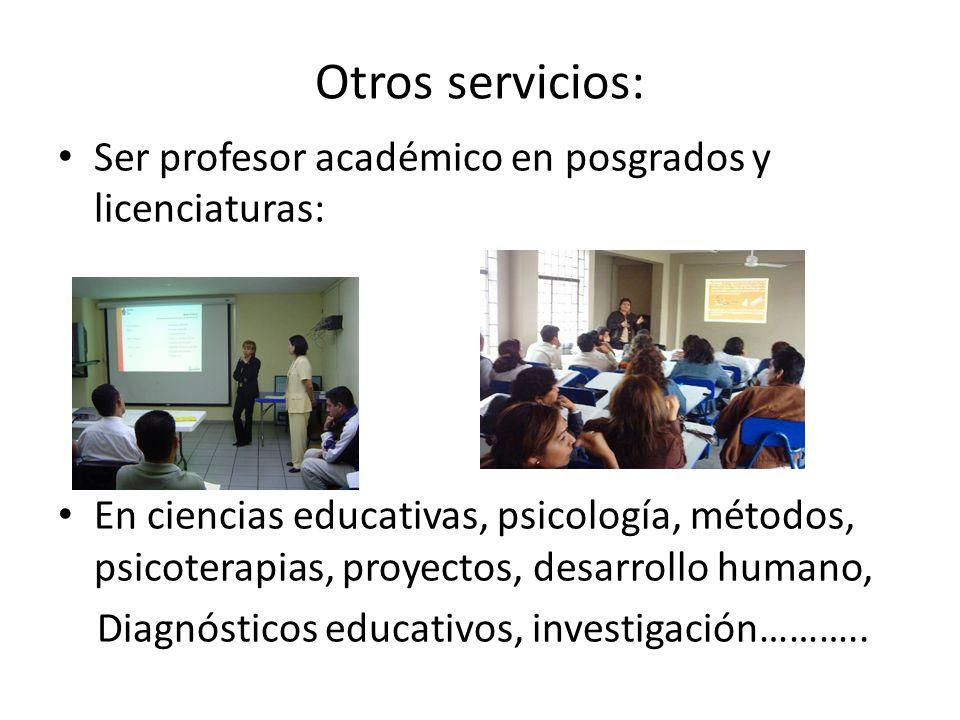 Otros servicios: Ser profesor académico en posgrados y licenciaturas: