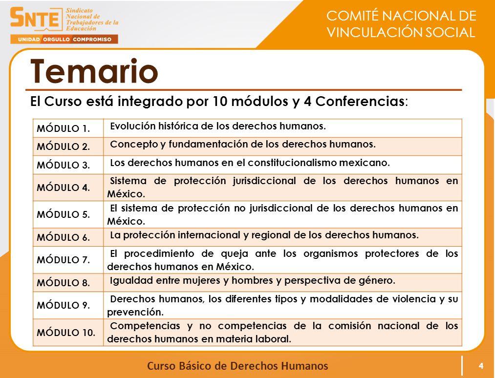 Temario El Curso está integrado por 10 módulos y 4 Conferencias: