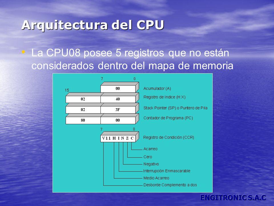 Arquitectura del CPULa CPU08 posee 5 registros que no están considerados dentro del mapa de memoria.