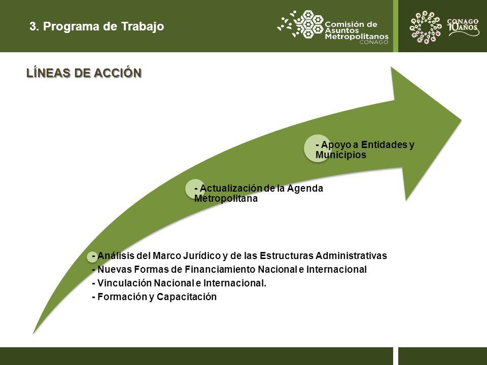 3. Programa de Trabajo LÍNEAS DE ACCIÓN