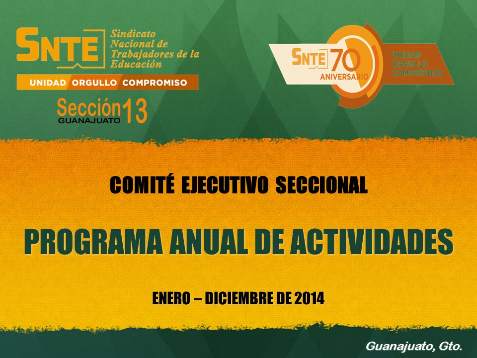 PROGRAMA ANUAL DE ACTIVIDADES ENERO – DICIEMBRE DE 2014