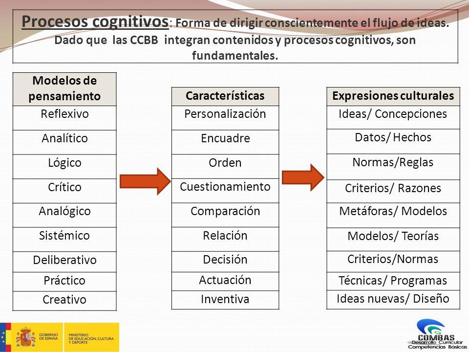 Modelos de pensamiento Expresiones culturales