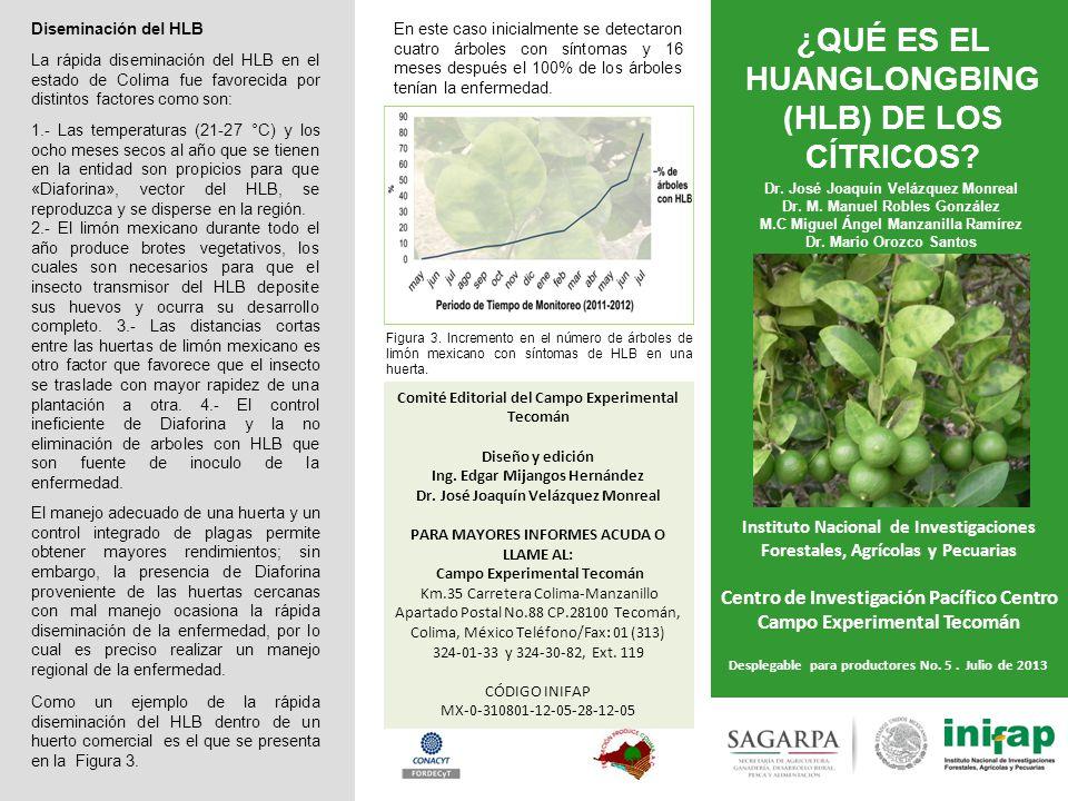 ¿QUÉ ES EL HUANGLONGBING (HLB) DE LOS CÍTRICOS