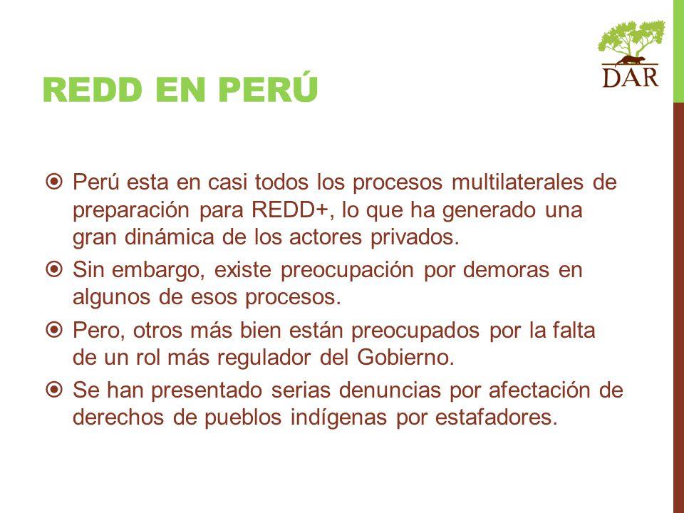REDD en perú