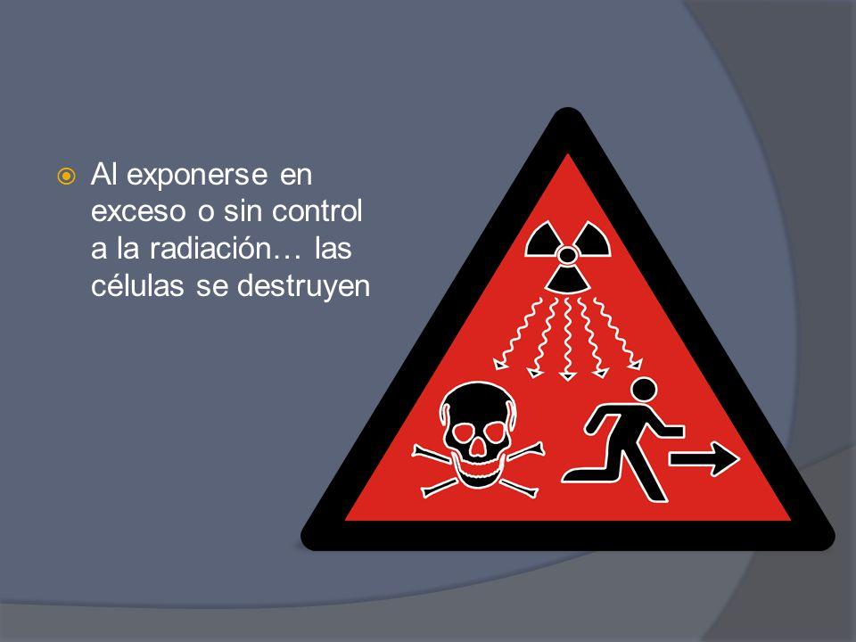 Al exponerse en exceso o sin control a la radiación… las células se destruyen