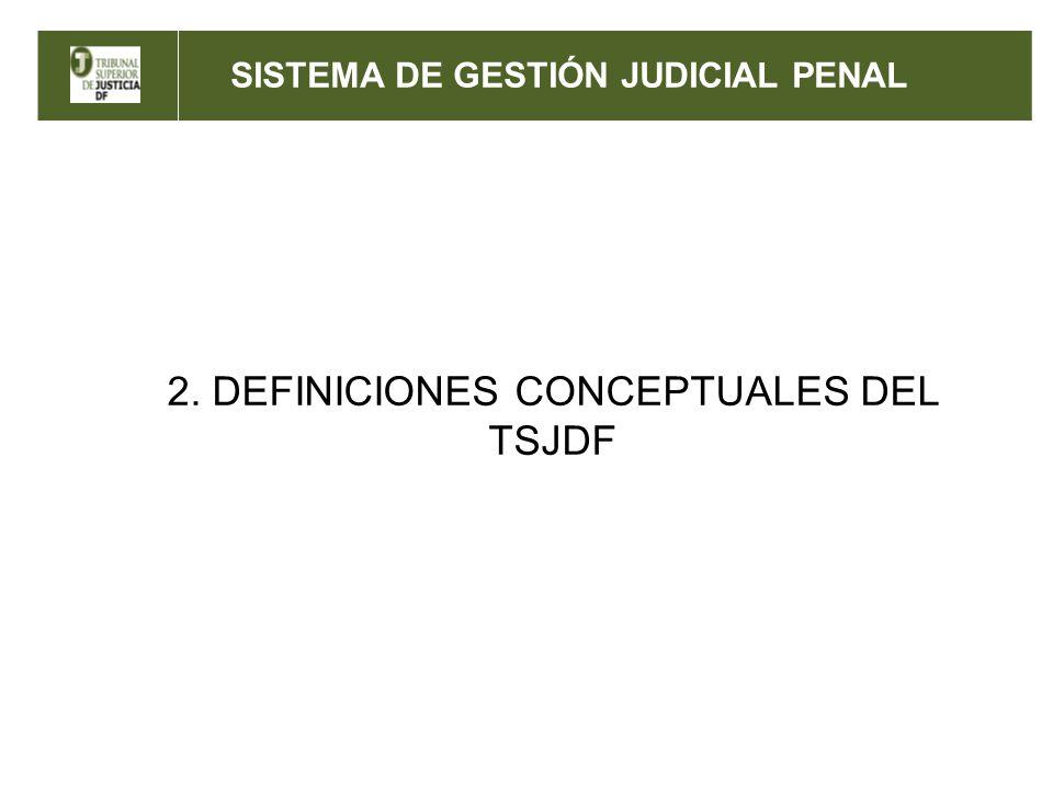 2. DEFINICIONES CONCEPTUALES DEL TSJDF