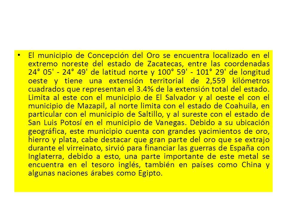 El municipio de Concepción del Oro se encuentra localizado en el extremo noreste del estado de Zacatecas, entre las coordenadas 24° 05 - 24° 49 de latitud norte y 100° 59 - 101° 29 de longitud oeste y tiene una extensión territorial de 2,559 kilómetros cuadrados que representan el 3.4% de la extensión total del estado.