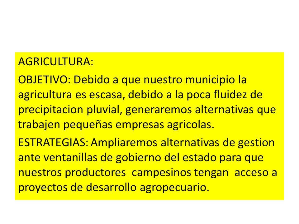 AGRICULTURA: OBJETIVO: Debido a que nuestro municipio la agricultura es escasa, debido a la poca fluidez de precipitacion pluvial, generaremos alternativas que trabajen pequeñas empresas agricolas.