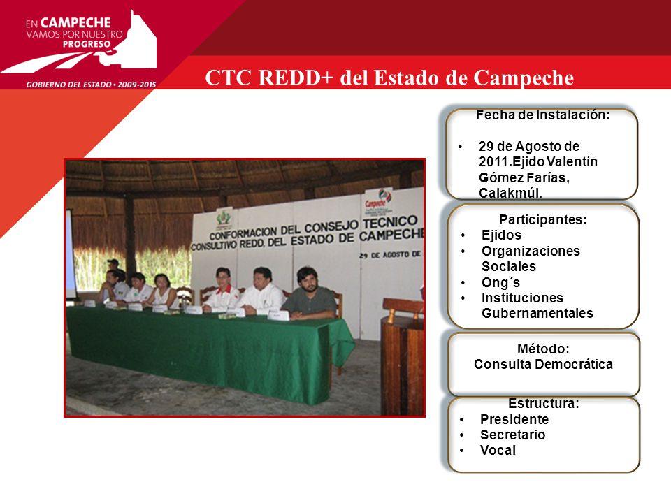 CTC REDD+ del Estado de Campeche