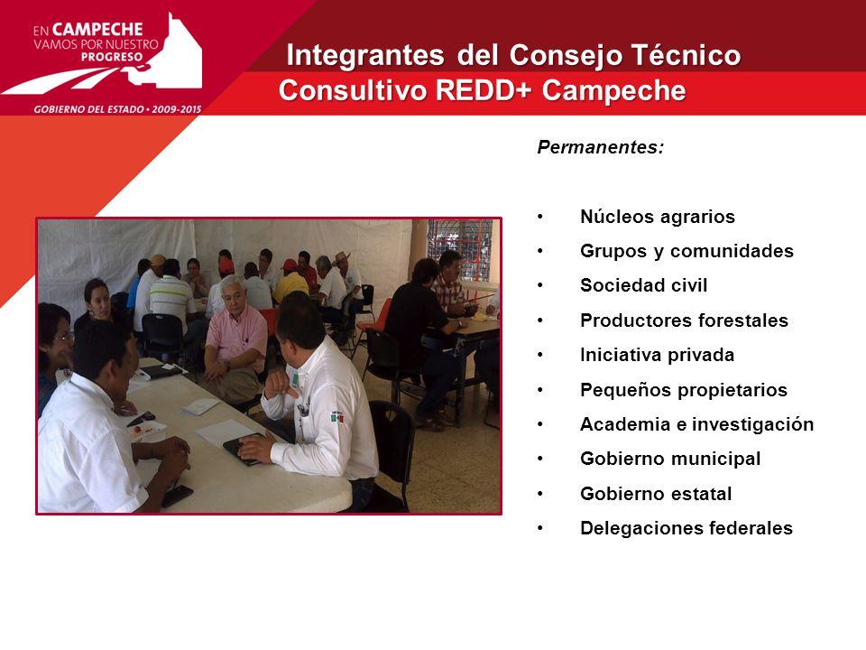 Integrantes del Consejo Técnico Consultivo REDD+ Campeche