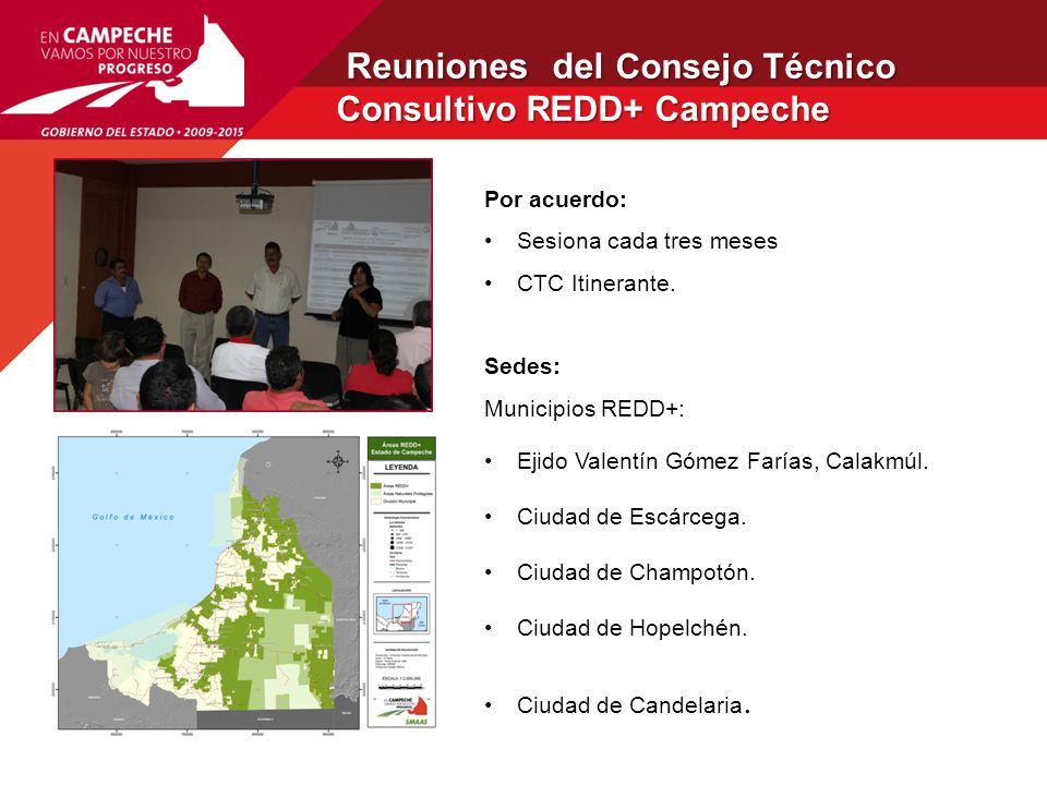 Reuniones del Consejo Técnico Consultivo REDD+ Campeche