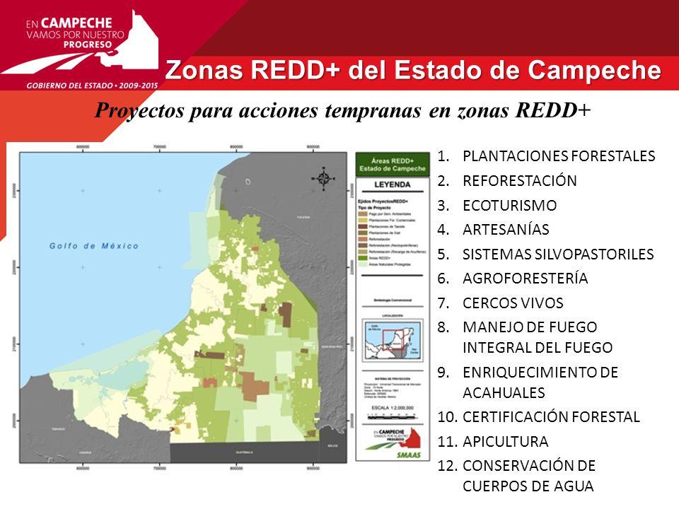 Zonas REDD+ del Estado de Campeche
