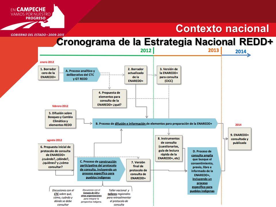 Contexto nacional Cronograma de la Estrategia Nacional REDD+