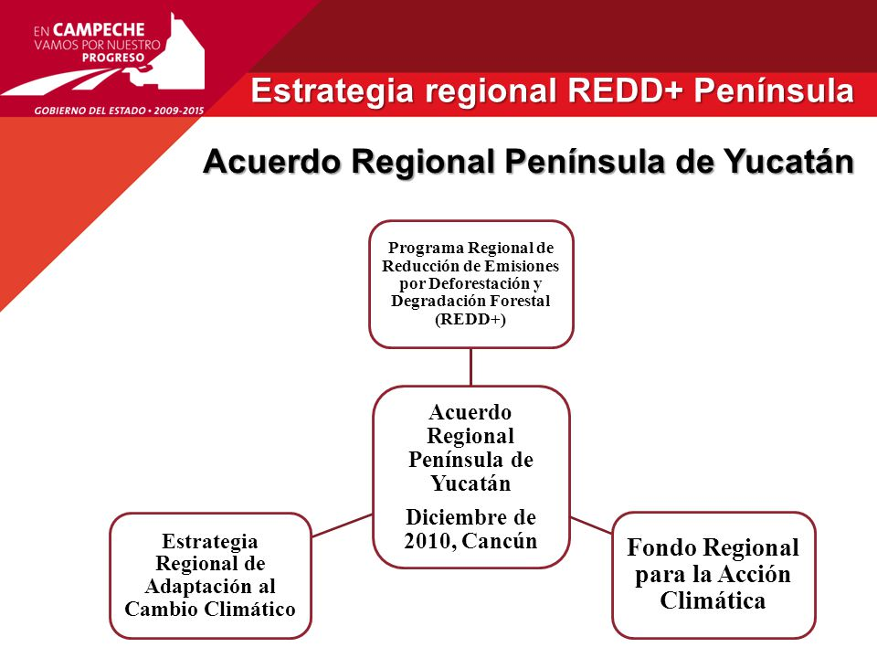 Estrategia regional REDD+ Península