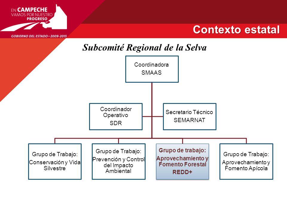 Subcomité Regional de la Selva