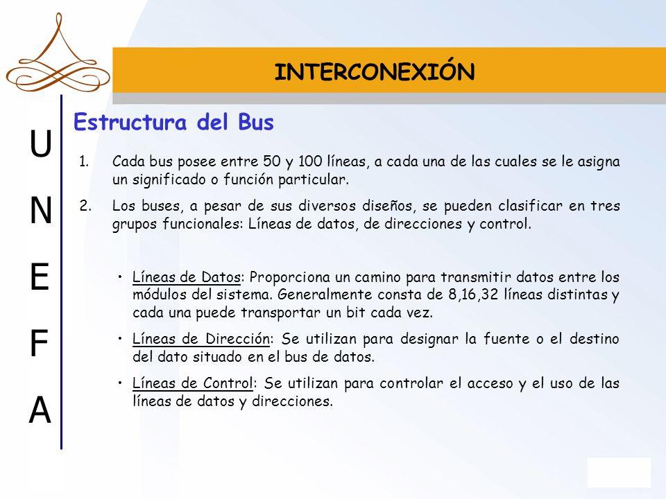 INTERCONEXIÓN Estructura del Bus