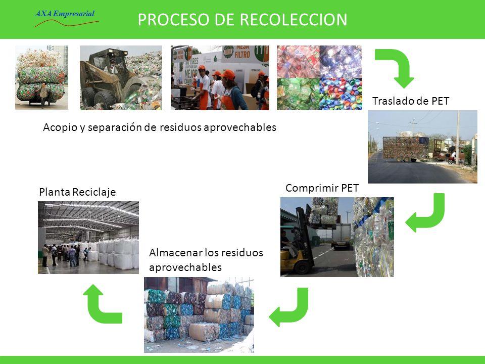PROCESO DE RECOLECCION