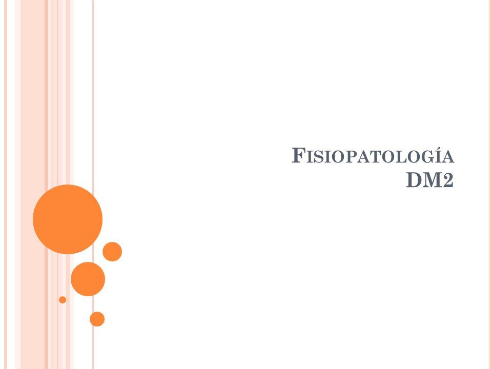 Fisiopatología DM2