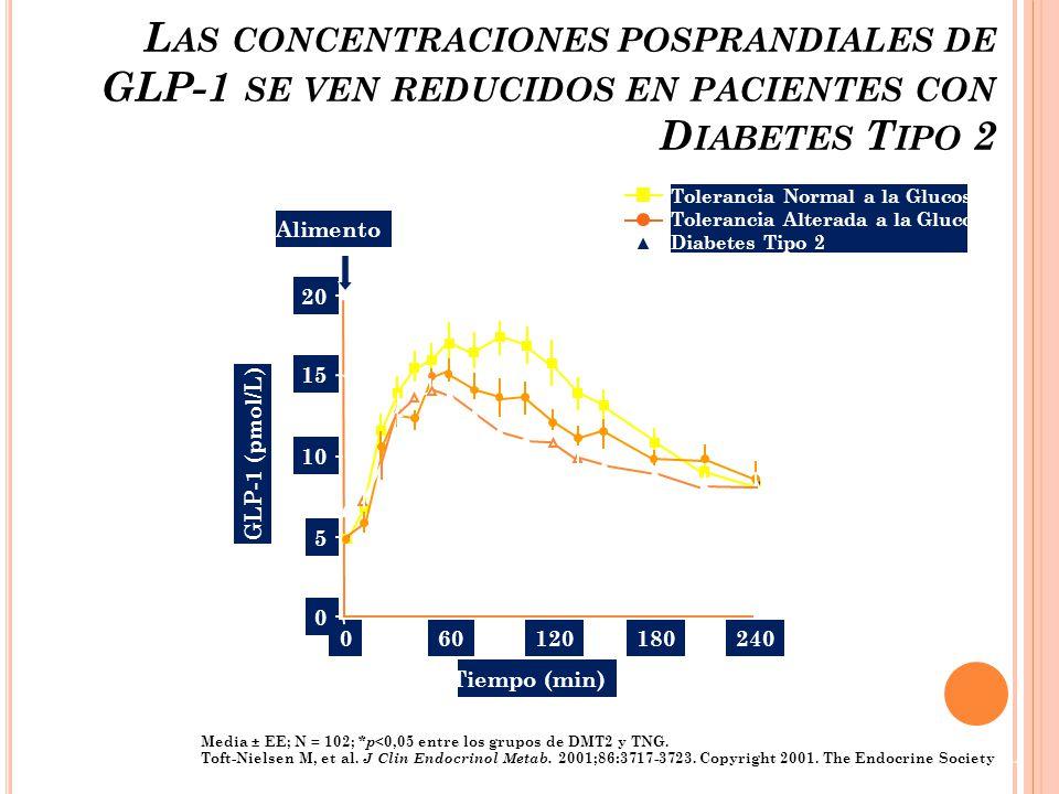 Las concentraciones posprandiales de GLP-1 se ven reducidos en pacientes con Diabetes Tipo 2