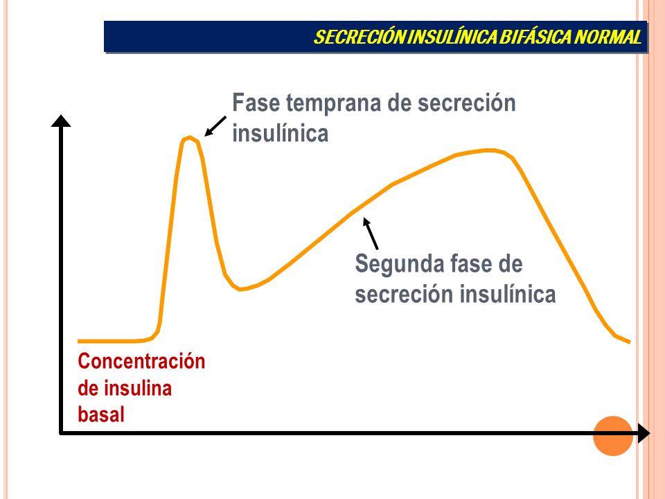 Fase temprana de secreción insulínica
