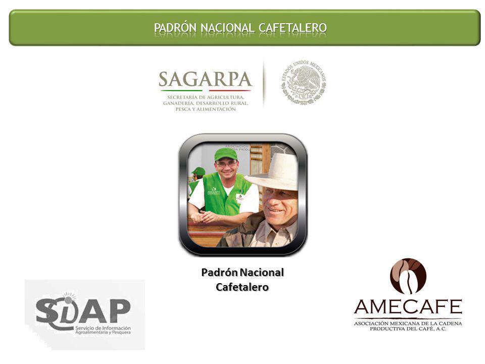 Padrón Nacional Cafetalero