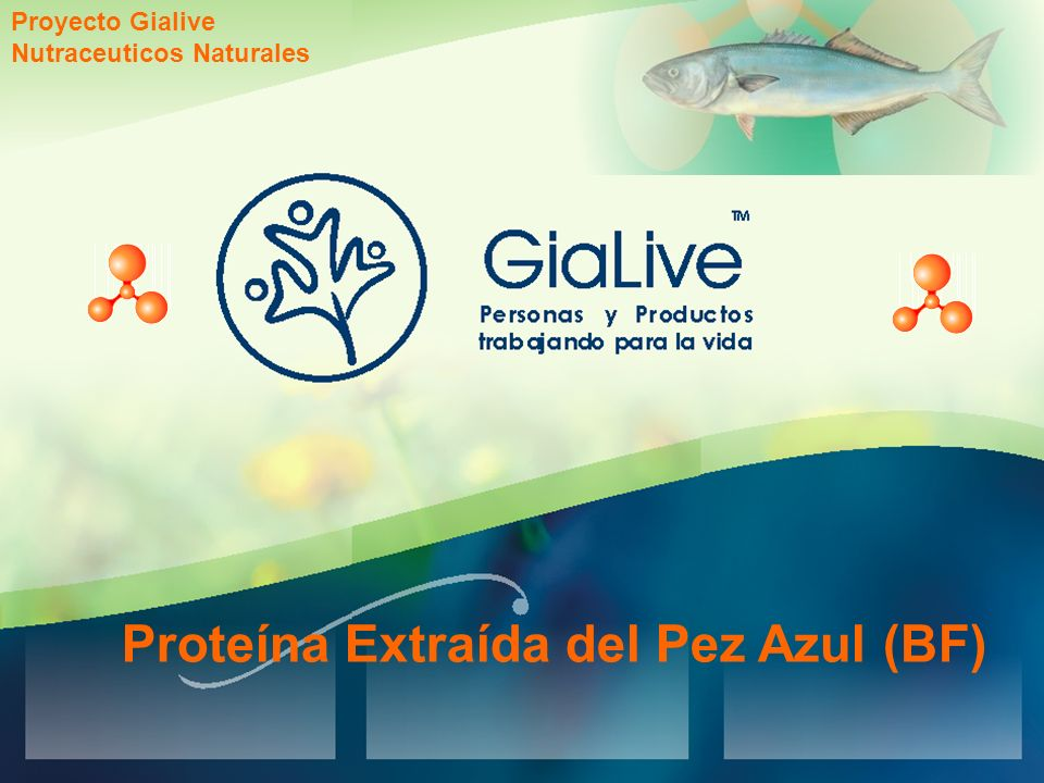 Proteína Extraída del Pez Azul (BF)