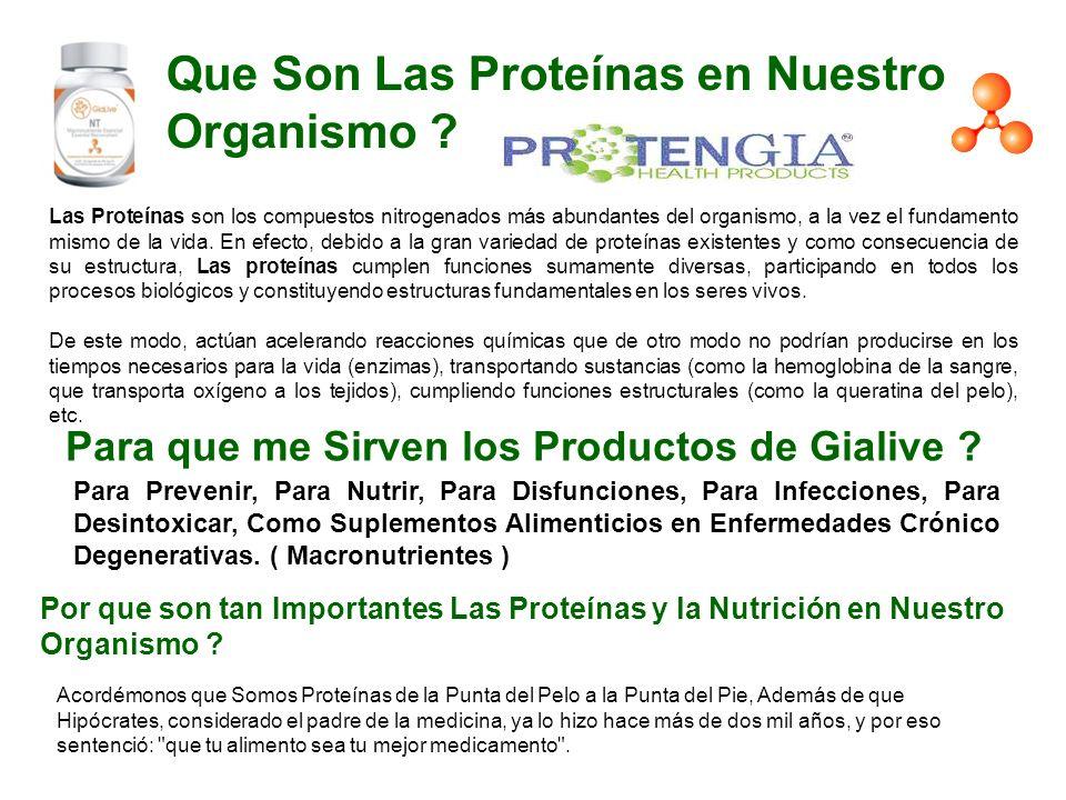 Que Son Las Proteínas en Nuestro Organismo