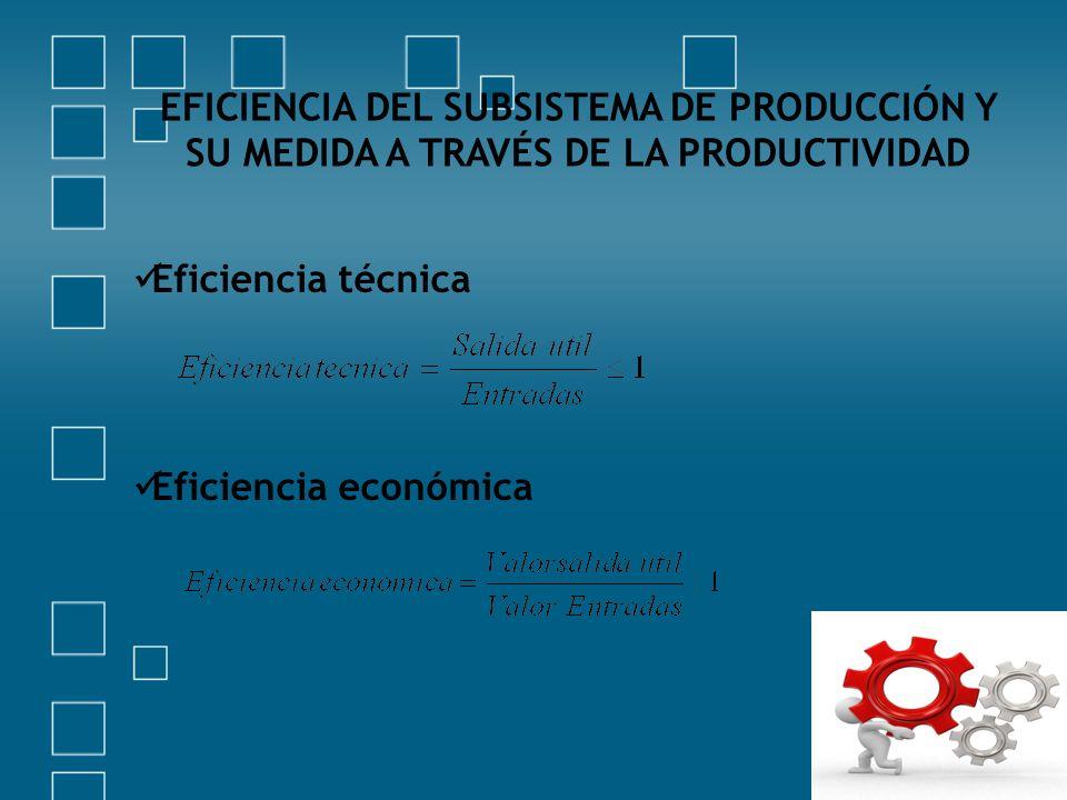 EFICIENCIA DEL SUBSISTEMA DE PRODUCCIÓN Y SU MEDIDA A TRAVÉS DE LA PRODUCTIVIDAD