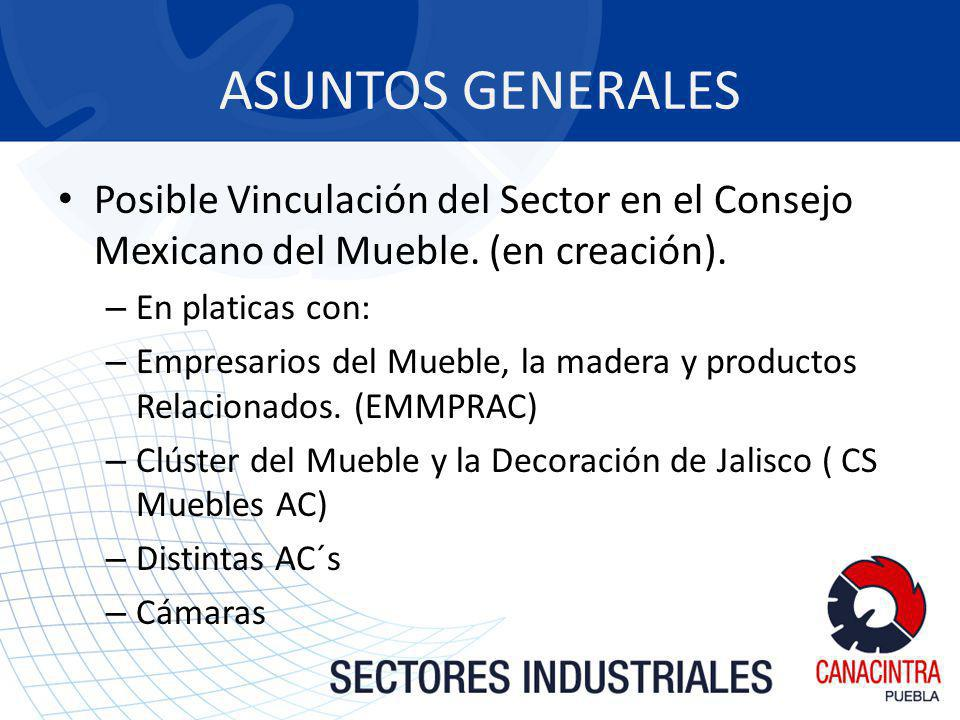 ASUNTOS GENERALES Posible Vinculación del Sector en el Consejo Mexicano del Mueble. (en creación). En platicas con: