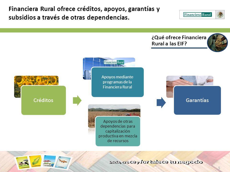 Apoyos mediante programas de la Financiera Rural